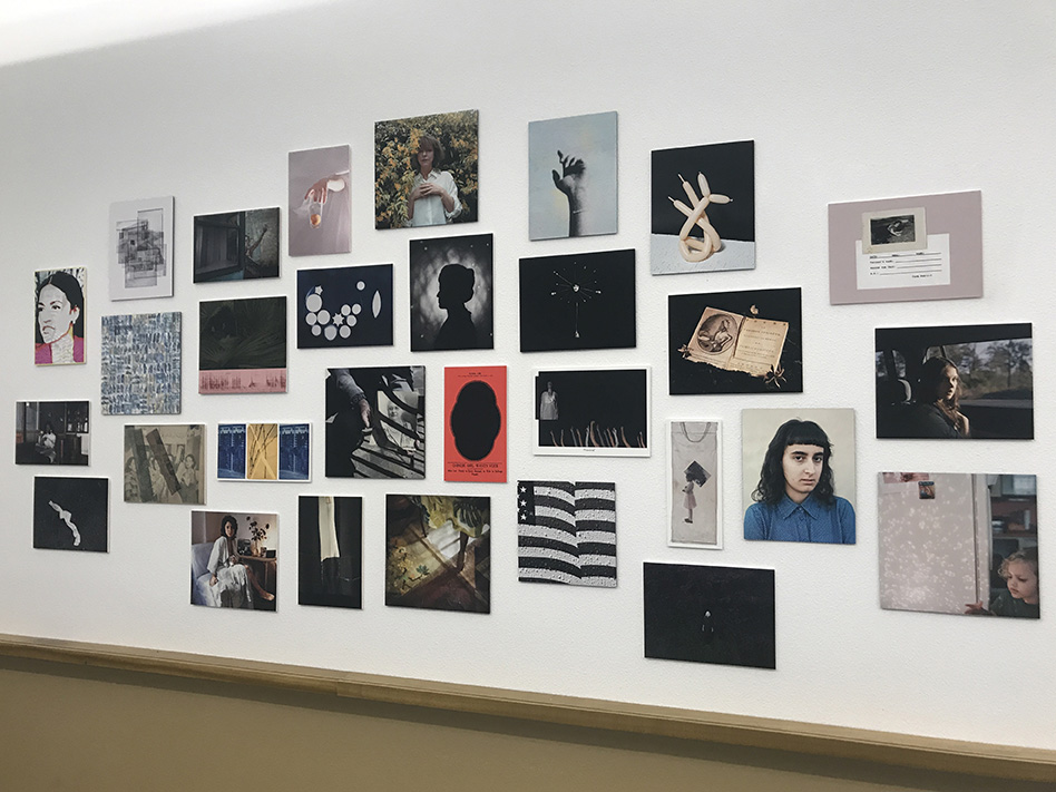 Photo of the Yellow Rose Exhibition